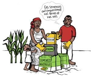 semences-paysannes-3